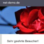 net-demo.de
